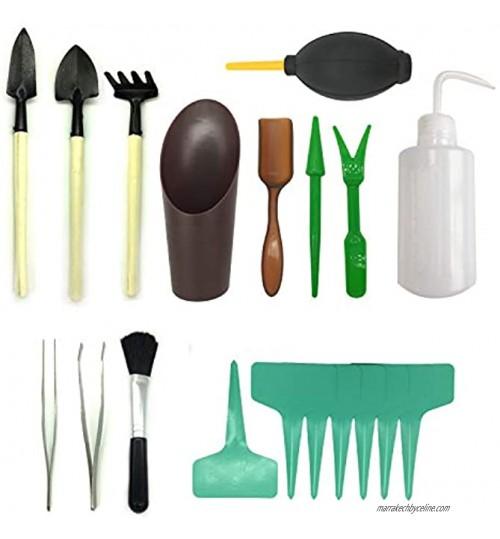 Pietypet Lot de 21mini outils de jardin Pour transplantation de plantes succulentes