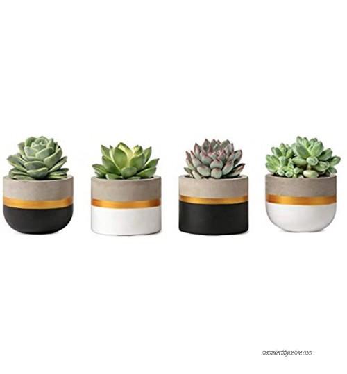 Mkouo 8cm Mini Ciment Succulent Plantes Moderne Concrete Cactus Pots de Plantes Small Clay Intérieur Herb Window Box Container for Home and Office Decor Set of 4